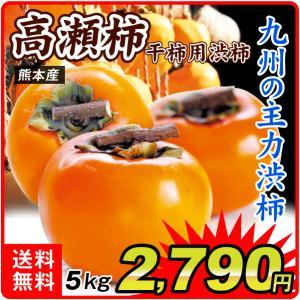柿 熊本産 高瀬柿・渋柿 10kg1組 カキ フルーツ 国華園 seikaokoku