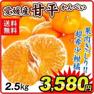 みかん 愛媛産 甘平(2.5kg)ご家庭用 柑橘 かんぺい ジュ―シー 食品 国華園 seikaokoku