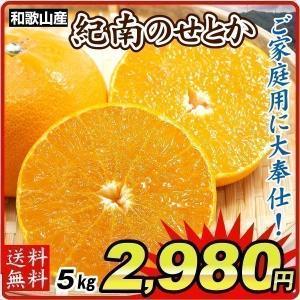 みかん 和歌山産 紀南のせとか(5kg)ご家庭用 数量限定 無選別 木熟 トロトロ食感 柑橘 フルー...