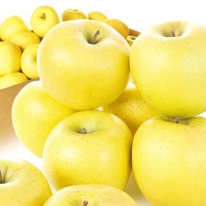 青森産 シナノゴールド20kg 木箱 国華園 りんご リンゴ|seikaokoku