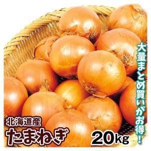 たまねぎ 北海道産 たまねぎ(20kg)L大サイズ 玉葱 ご家庭用 大量 野菜 国華園|seikaokoku