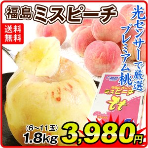 【数量限定】 桃 福島の桃 ミスピーチ (約1.8kg) 6〜11玉 ご家庭用 もも ピーチ フルーツ 国華園|seikaokoku