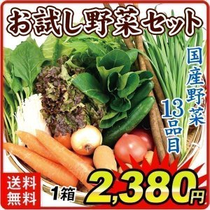 国産 お試し野菜セット 13種1箱 送料無料 葉物 根菜 野菜詰め合わせ 自宅へお届け 常温 国華園|seikaokoku