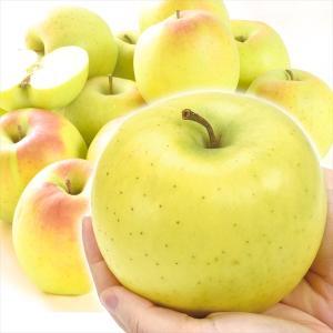 りんご 青森産 サンむつ 約20kg 木箱 ご家庭用 送料無料 食品|seikaokoku