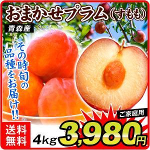 プラム 青森産 ご家庭用 プラム 4kg 送料無料 スモモ 冷蔵 お買得 品種おまかせ|seikaokoku