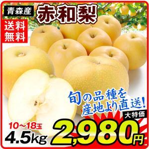 梨 青森産 赤和梨 (4.5kg) 品種おまかせ 10〜18玉 ご家庭用 なし ナシ 和梨 果物 フルーツ 国華園の画像