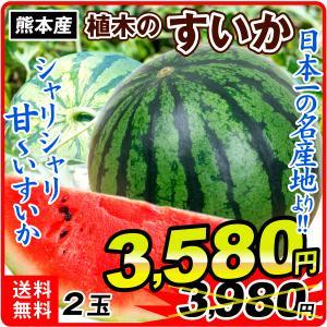 すいか 熊本産 すいか 2玉 1組 フルーツ 食品 国華園
