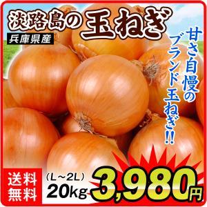 【数量限定】 淡路島産 たまねぎ 20kg 1箱 送料無料 食品 国華園|seikaokoku