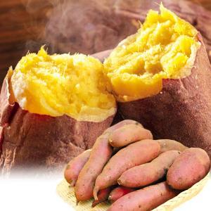 さつまいも 熊本・宮崎産 紅はるか 10kg  訳あり ご家庭用 甘藷 サツマイモ 野菜 数量限定 国華園|seikaokoku