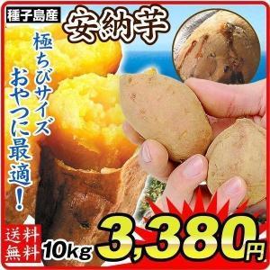 さつまいも 種子島産 安納芋【極ちび】 10kg ご家庭用 送料無料 食品|seikaokoku