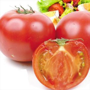 トマト 熊本産他 トマト 約3.5kg ご家庭用 送料無料 食品|seikaokoku