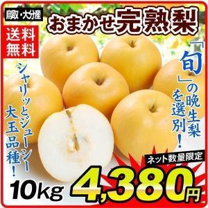 梨 鳥取産 おまかせ完熟梨 10kg 1箱  和梨 ご家庭用 送料無料 食品 国華園|seikaokoku