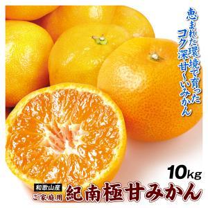 みかん 和歌山産 紀南の極甘みかん 10kg ご家庭用 送料無料 食品|seikaokoku