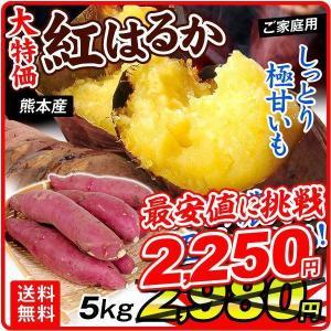 さつまいも 熊本産 紅はるか 5kg  訳あり ご家庭用 甘藷 サツマイモ 野菜 数量限定 国華園|seikaokoku