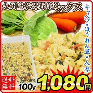 九州産 乾燥野菜 ミックス 100g 1袋 送料無料 メール便 にんじん キャベツ ほうれん草 食品...