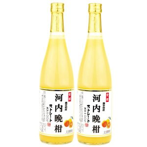 愛媛産 河内晩柑ジュース 2本|seikaokoku