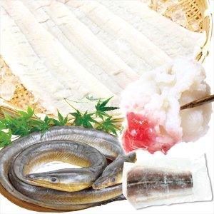 魚 国産 はも・骨切り済 300g 2袋 冷凍便 食品|seikaokoku