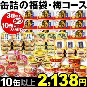 非常食 缶詰 缶詰の福袋・梅コース 1組 食品 防災 災害 保存食 備蓄 グルメ