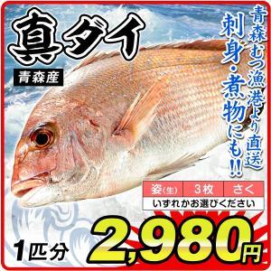 真鯛 タイ 1尾分(約1kg)青森産 鯛(姿・3枚おろし・さくのいずれかお選びください)むつ漁港より...