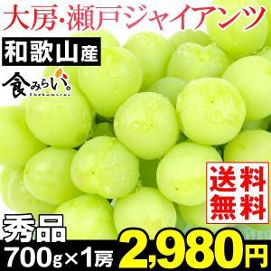 ぶどう 和歌山産 瀬戸ジャイアンツ・秀品 700g1房入り ...