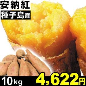 さつまいも 安納芋 種子島産 安納紅 10kg 1組