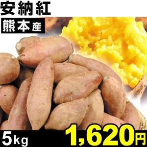 さつまいも 安納芋 熊本産 安納紅 5kg 1組
