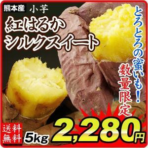 さつまいも 熊本産 紅はるか 又は シルクスイート 小芋 5kg  訳あり ご家庭用 甘藷 サツマイモ 野菜 数量限定 国華園|seikaokoku