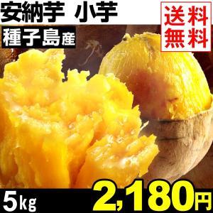 さつまいも 安納芋 種子島産 小芋 安納紅 5kg 1組