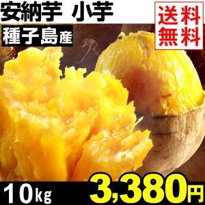 さつまいも 安納芋 種子島産 小芋 安納紅 10kg 1組