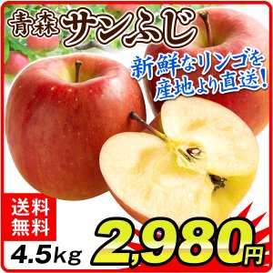 りんご 青森・南部産 サンふじ(4.5kg)産地直送 林檎 フルーツ 果物 国華園|seikaokoku
