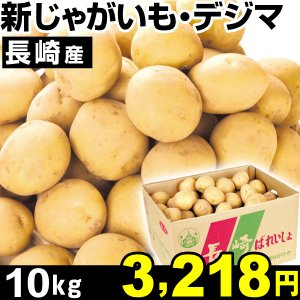 ジャガイモ 長崎産 新じゃが芋 デジマ 10kg 1箱 じゃ...