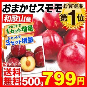 スモモ おまかせスモモ 和歌山県産 500g1組  2セット目から送料無料 3セット目から増量あり プラム 西洋スモモ