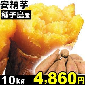 安納芋 種子島産 安納芋 10kg 1組 中園ファーム...