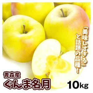 りんご 大特価 青森産 ぐんま名月(10kg)28〜56玉 ご家庭用 数量限定 ぐんまめいげつ 希少品種 林檎 フルーツ 果物 国華園|seikaokoku