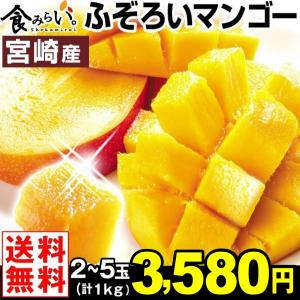 マンゴー 【超買得】宮崎産 ふぞろいアップルマンゴー 1kg...