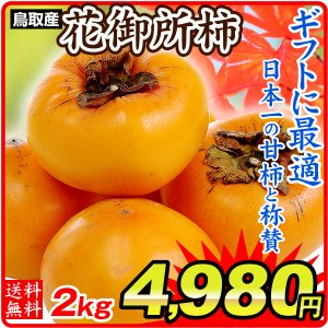 柿 【お買得】鳥取産 花御所柿 5kg 1箱 送料無料 ご家庭用 はなごしょ