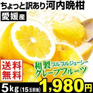 みかん ちょっと訳あり 愛媛産 河内晩柑 5kg 1箱 送料...