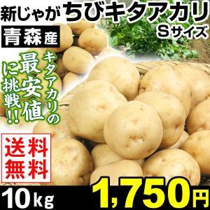 ジャガイモ 青森産 新じゃが ちびキタアカリ 10kg 1箱...