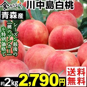 桃 青森産 川中島白桃 約2kg 1箱 送料無料 6〜10玉...