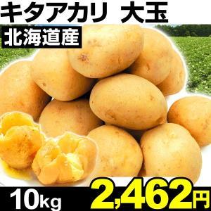 ジャガイモ 北海道産 キタアカリ 【大玉】 10kg1箱 食...
