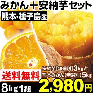 みかん 安納芋 熊本産 売れっ子みかん5kg+安納芋3kgセ...
