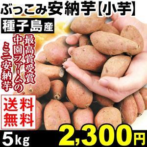 安納芋   種子島産 ぶっこみ安納芋 小芋 5kg 1組 送...