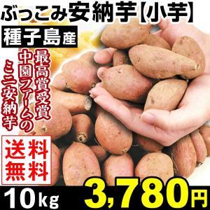 安納芋  種子島産 ぶっこみ安納芋 小芋 10kg 1組 送...