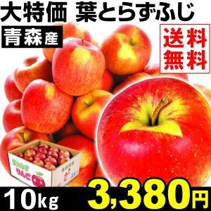 リンゴ 大特価 ご家庭用 青森産 葉とらずふじ 10kg 1...