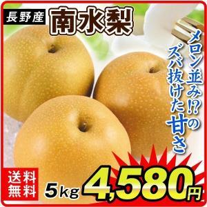 梨 長野産 南水梨(5kg)8〜18玉 ご家庭用 なんすい 希少品種 なし 和梨 果物 フルーツ 国華園|seikaokoku