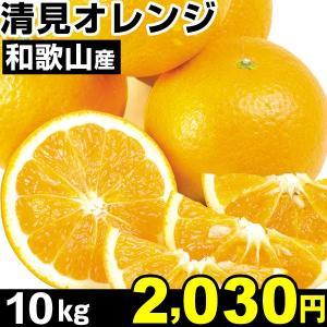 みかん 和歌山産 清見オレンジ 10kg1箱  食品