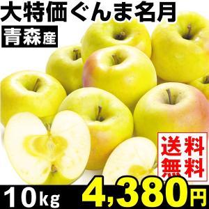 リンゴ【2018年発送りんご】大特価 青森産 ぐんま名月 1...