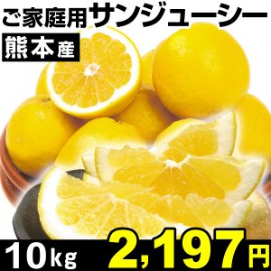 みかん 熊本産 ご家庭用 サンジューシー 10kg1箱 河内...