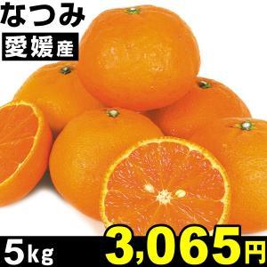 みかん 愛媛産 なつみ 5kg1組 ご家庭用 食品 seikaokoku