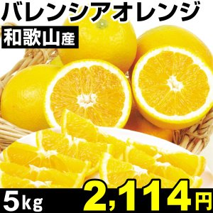 みかん 和歌山産 バレンシアオレンジ 5kg1箱 食品